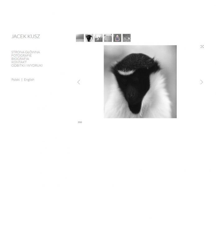 Wdrożenie strony internetowej portfolio fotograficznego na gotowym szablonie